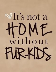 Nope it sure isn't & how funny as that's what I call them! Kids with fur coats, fur babies, or fur kids! Yorkies, Chihuahuas, Beagles, Schnauzers, Westies, Dachshunds, Pomeranians, Crazy Cat Lady, Crazy Cats