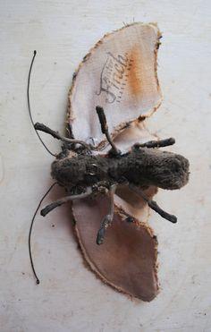 Soft sculpture moth. Unique textile art. by MisterFinch on Etsy