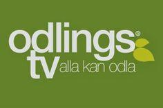 Jessica Lyon -Odlarbloggen.: OdlingsTV www.odlingstv.se