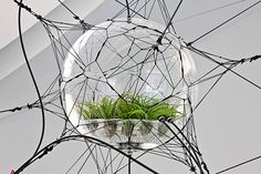 The Biospheres installation, by Tomas Saraceno, is inspired by careful scientific studies of the formation of clouds, soap bubbles and the geometric principles behind spider webs. Several of the spheres contain plant-based ecosystems, while the largest of them invites spectators to step inside http://www.tomassaraceno.com/