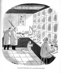 Looks like Wesselman's hit on something interesting Addams Family Cartoon, Cartoon Familie, Morbid Humor, Charles Addams, Adams Family, New Yorker Cartoons, Retro Pop, Fun Comics, Kids Shows