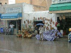 #magiaswiat #podróż #zwiedzanie #targoui #blog #afryka  #tunezja #sousse #sidibousaid #morze #srodmiejskie #statki #medina #suk #katakumby #niebieskiemiasto #monastyr #mauzoleum # fort #medina #port #elkantaoul #flamingi #tunis #kartagina #hergla #meczet Blog, Painting, Art, Art Background, Painting Art, Kunst, Blogging, Paintings, Performing Arts