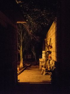 "©In situ No. 7, de la serie: ""Habitat"" 5 de Mayo de 2013, Campeche, Camp; México"