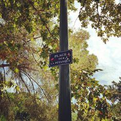"""""""Place de la pétanque"""" parc central de Bonneveine #Marseille"""