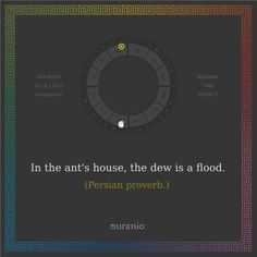 Ouranio.com | Daily quote: In the ant's house...
