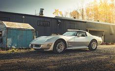 Herunterladen hintergrundbild chevrolet corvette, 1yy, 1982, retro-sportwagen, american classic sports cars, retro silber corvette, chevrolet