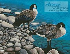 Artecy Cross Stitch. Two Canadian Geese Cross Stitch Pattern to print online.