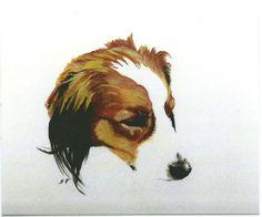 Kooikerhondje postcard 4 x 5 glossy printed by by ArtstudioSFuller, $7.50