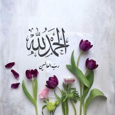 Doa Islam, Islam Hadith, Islam Quran, Alhamdulillah, Islamic Girl, Islamic Dua, Quran Verses, Quran Quotes, Islamic Inspirational Quotes