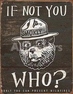 Smokey Bear - If Not You Who by Ray Strong Landscapes Tin Sign - 32 x 41 cm