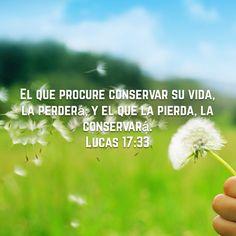 «Quem tentar conservar a sua vida a perderá, e quem perder a sua vida a preservará.» Lucas 17:33