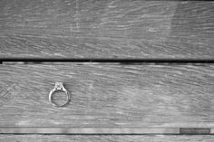 Tacori ring on a park bench in Stephen Juba Park Tacori Rings, Engagement Photography, Silver Rings, Bench, Park, Jewelry, Jewlery, Jewerly, Schmuck