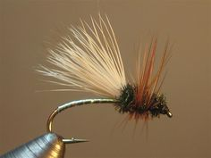 Advice to assist you to Develop Your own knowledge of fishing trip Fly Fishing Lures, Fly Fishing Tips, Trout Fishing, Fishing Hole, Fly Fishing For Beginners, Fishing Basics, Fly Tying Desk, Fly Craft, Bait