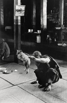 """joeinct: """"Monastère des chats sauteurs, Photo by Sabine Weiss """" Sabine Weiss, Robert Doisneau, Willy Ronis, Photo Repair, A Kind Of Magic, Photo Restoration, French Photographers, Cat People, Great Photos"""