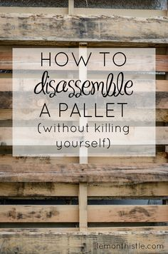 How to disassemble a pallet without killing yourself! SO Helpful! @ludionline