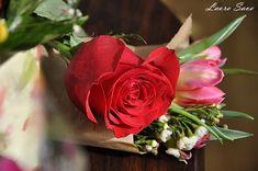 Tort Felia de lapte fara coacere | Retete culinare cu Laura Sava - Cele mai bune retete pentru intreaga familie Mai, Lily, Rose, Flowers, Plants, Pink, Orchids, Plant, Roses