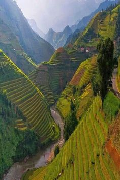 Terracing in Vietnam