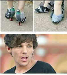 El tommo te caga a palos One Direction Official, One Direction Videos, One Direction Quotes, One Direction Louis, One Direction Imagines, 1d Imagines, Zayn, Harry 1d, Busse