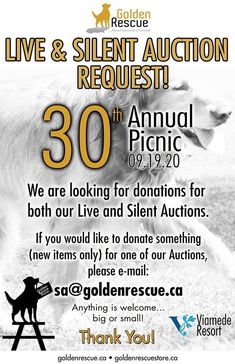 Our 30th Anniversary Golden Rescue Picnic is fast approaching! Depending on provincial guidelines and restrictions, we hope it will be held Saturday September 19th at the stunning Viamede Resort. As we shared previously, our auction will be online this year so more people can participate. Details to follow. We are still looking for item donations for our auction. If you would like to donate something (new items only), please email sa@goldenrescue.ca Everything welcome...big or small. Thank… Golden Events, Silent Auction, New Item, Picnic, Big, September, 30th Anniversary, 21st, Exciting News