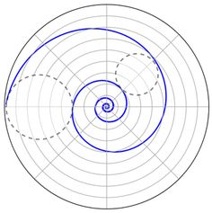 Logarithmic Spiral in Nature - Bing Images Geometric Quilt, Geometric Drawing, How To Draw Sacred Geometry, Basic Art Techniques, Circle Theorems, Logarithmic Spiral, Spirals In Nature, Geometric Construction, Pseudo Science