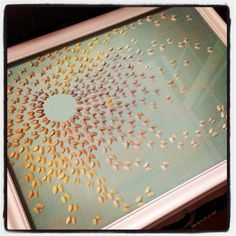 """""""Butterfly"""" shell art from coquina clams done in gradiated color scheme glued on painted canvas. It was like putting a puzzle together matching up colors correctly and placing them to give movement."""