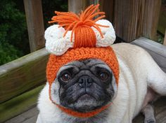 Ridiculous Knit Hats For Your Dog- poor little pug! But I'd probably do this to my dog too if he was this gentle mannered