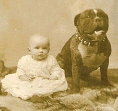 "Vintage photo of baby girl with pit bull.  Pit bulls used to be called ""nanny dogs"" as they used to be left in charge of keeping the children safe.  Something to think about, aye?  Maybe they are being villanized today.  Same used to be true about Dalmatians!"