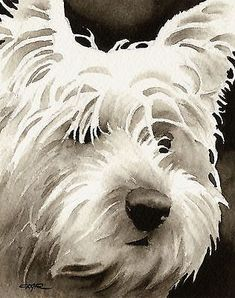 WEST HIGHLAND TERRIER Watercolor Dog ART PRINT Signed by Artist DJR