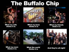 You're at the LEGENDARY BUFFALO CHIIIIIIIIIIP!