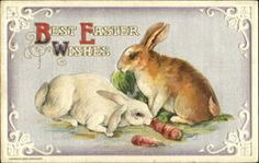 Divided Back Postcard Best Easter Wishes Easter Bunny Images, Easter Wishes, Easter Greeting Cards, Easter Parade, Vintage Cards, Vintage Photos, Vintage Easter, Easter Crafts, Happy Easter