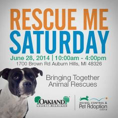 THIS SATURDAY, join the Oakland County Animal Control  Pet Adoption Center for Rescue Me Saturday - an event featuring local rescues and adoptable pets that are looking for their forever home. YOU can help save the life of one of Oakland County's furry finest. Visit our Facebook event page for more information!