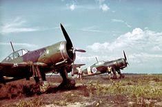 Fokker D.XXI : Utti airfield   @sa-photo