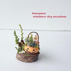 ☁ #ミニチュア #多肉植物 #ハロウィン かぼちゃの ポットの寄せ植え。  ヤフオク出品致しました。 9月25日(日) 22時50分頃まで開催中です。  詳細はヤフオク #ドールハウス  のカテゴリーにて。 宜しくお願い致します。  #ハンドメイド#樹脂粘土#粘土多肉植物 #miniature#handmademiniature #dollhouseminiatures#diorama #halloween#halloweenminiature   昨日 昼過ぎからスマホが使えなくてビックリ。 やはり使えないと困りますね。