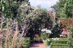 white garden at Sissinghurst