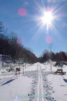 Wye Marsh - Ontario Ski Trails Cross County, Xc Ski, Easy Cross, Ontario, Skiing, Trail, Outdoor, Ski, Outdoors