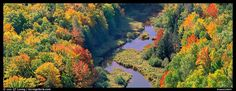 Forest in fall color and river from above. Upper Michigan Peninsula, USA (color)