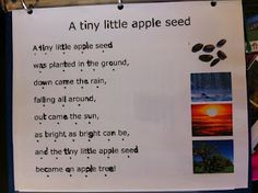 Apple song for apple week