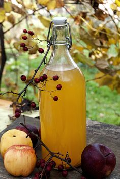 Otet din cidru de mere Juice Smoothie, Ranch Dressing, Canning Recipes, Syrup, Lemonade, Diy And Crafts, Homemade, Bottle, Health