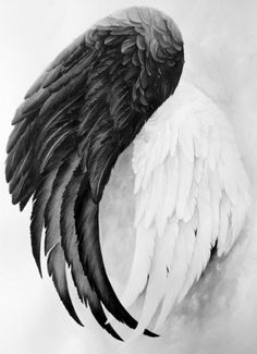 Love this<3 Angel Wings but maybe in more of a yin and yang symbol