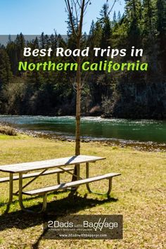 Best Road Trips in Northern California - 2 Dads with Baggage Best Vacation Destinations, Best Vacation Spots, Best Places To Travel, Best Vacations, Vacation Trips, Visit California, Northern California, Cruises, Baggage
