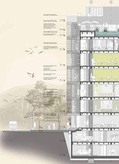 Render Architecture, Architecture Minecraft, Collage Architecture, Architecture Presentation Board, Architecture Graphics, Architecture Board, Architecture Drawings, Classical Architecture, Architecture Details