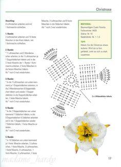 [flores+4.4.jpg]