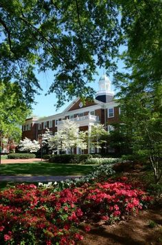Elon University  - so gorgeous!