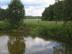 20 мая отдыхали на пруду - там было очень спокойно и хорошо!!!
