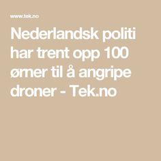 Nederlandsk politi har trent opp 100 ørner til å angripe droner - Tek.no