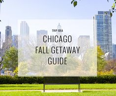 What not to miss on your Fall trip to the Windy City this year.