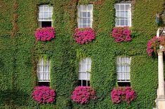 Casa ecológica!!!!
