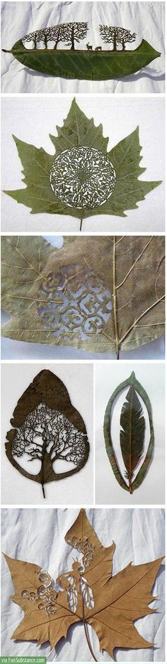 O.o ...That's... THAT'S TOO INCREDIBLE!!! OMG!!! How can you make such beautiful art inside of a fragile leaf??? HOW??!!!