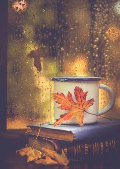 Books, tea and rain drops - Fall pictures nature - Watercolor Clipart, Autumn Cozy, Autumn Rain, Autumn Tea, Autumn Morning, Autumn Coffee, Fall Winter, Autumn Aesthetic, Fall Wallpaper
