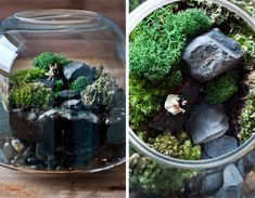 This year I wanted to make Christmas gifts that were out of the ordinary. I overheard one of my friends at work saying he was going to make a terrarium for his mom. I didn't even really know what a...